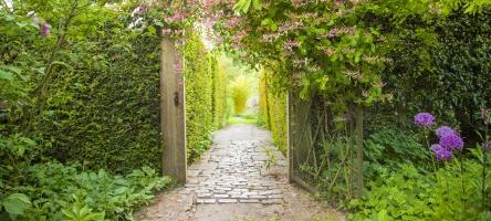 26 June 2018: Visit to Stockton Bury Gardens